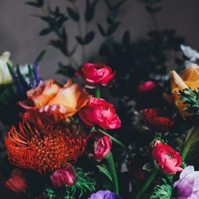bright flowers on a dark background