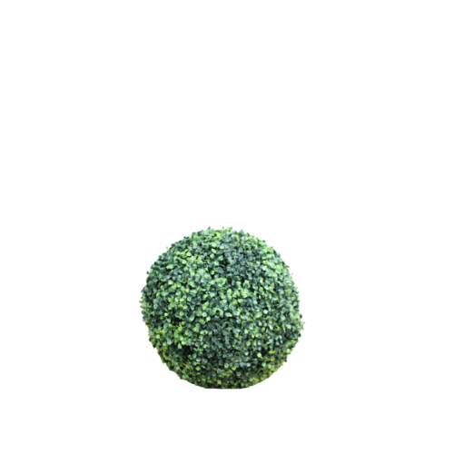 SML Buxus Ball